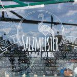 Salzmeister 2016 Details